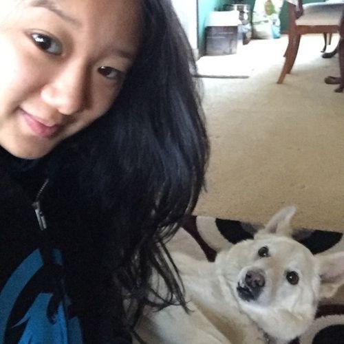 Pet Care Provider Tiffany Y's Profile Picture