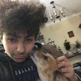 Caring Dog Walker in Sunnyvale