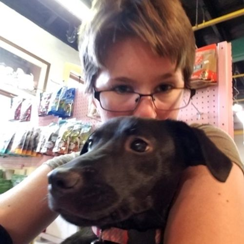 Pet Care Provider Katie W Gallery Image 3