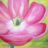 Painter in Wethersfield