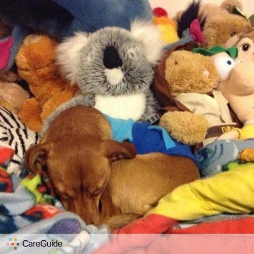 Pet Care Provider Valerie Silverberg's Profile Picture