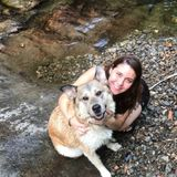 Very caring pet sitter/groomer in Cowansville, Quebec