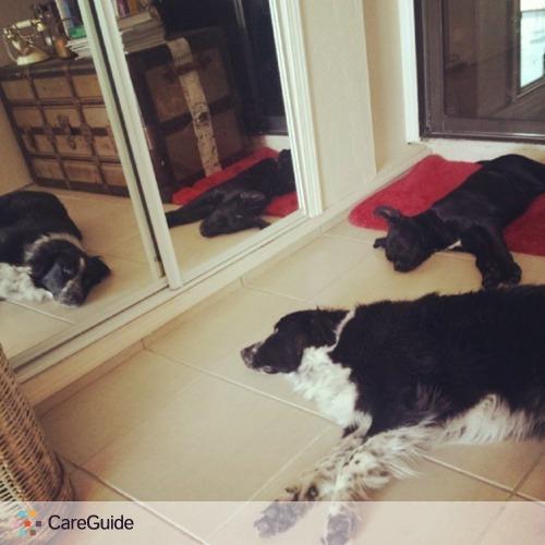 Pet Care Provider Ashley Salinas's Profile Picture