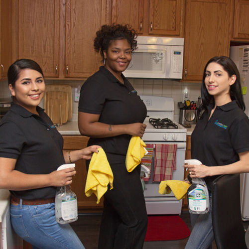 We are a professional home cleaning service, specializing in green cleaning, your solution for a clean home!