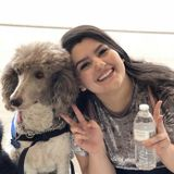 Seeking a Home Carer/Pet Care Job in Yuma, Arizona