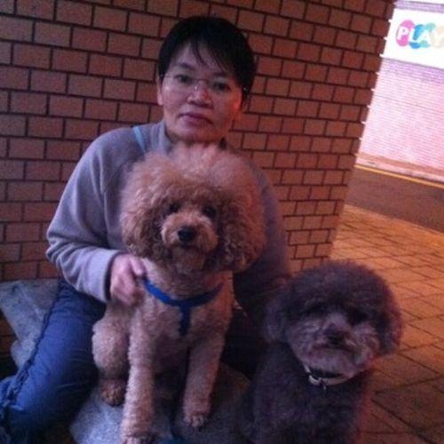 Pet Care Provider Kristiany K's Profile Picture