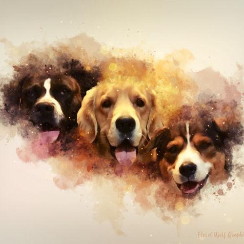 Pet Care Provider Kaia L's Profile Picture