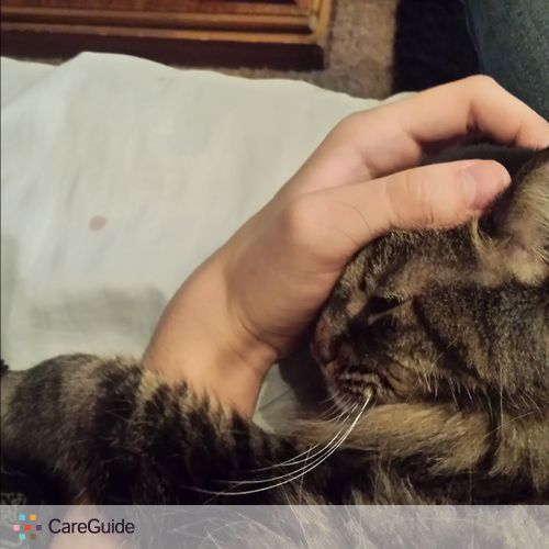 Pet Care Provider Blake R's Profile Picture