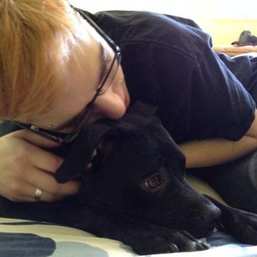 Pet Care Provider Matthew Staton Gallery Image 1