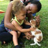 Qualified Dog Sitter in Jackson!