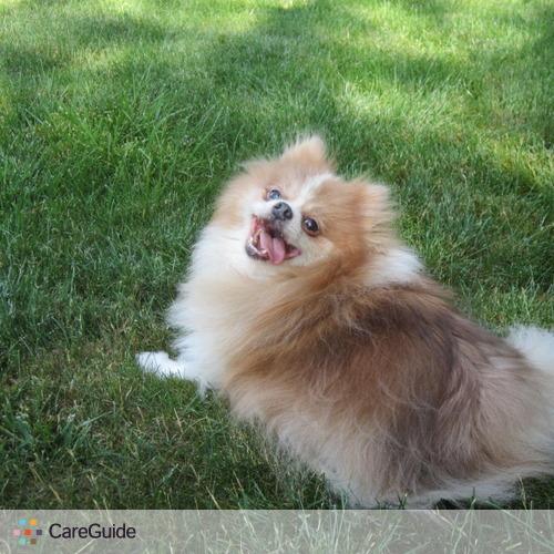 Pet Care Provider Paige S's Profile Picture