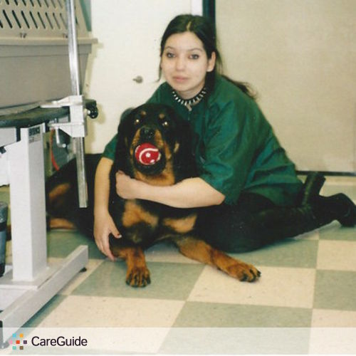Pet Care Provider Yuliana Gelb's Profile Picture