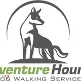 Dog Walker in Surrey
