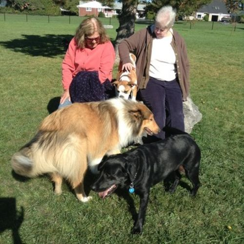 Pet Care Provider Wendy P's Profile Picture