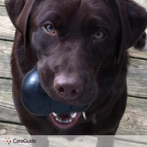 Pet Care Provider Kaitlin Johnson's Profile Picture