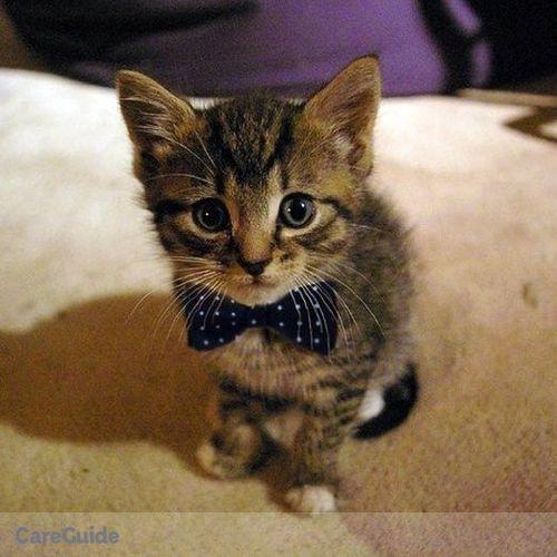 Pet Care Provider Danielle Turay's Profile Picture
