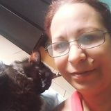 Flexible Cat Sitter in Miami Gardens, Florida