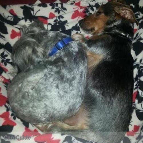 Pet Care Job Alia Osborn's Profile Picture