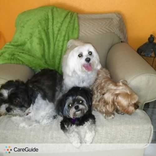 Pet Care Provider Laura C's Profile Picture
