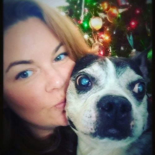 Pet Care Provider Brianne C's Profile Picture