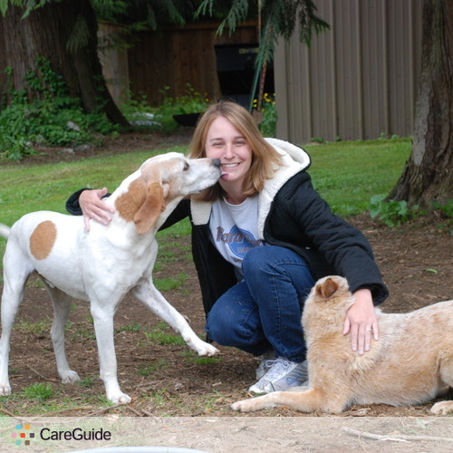 Pet Care Provider Michelle Kee's Profile Picture