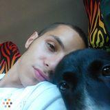 Dog Walker, Pet Sitter in Panama City