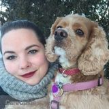 Dog Walker, Pet Sitter in Ottawa