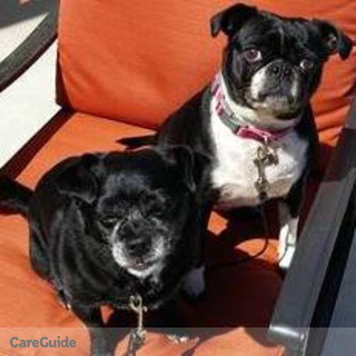 Pet Care Job Pamela Hull's Profile Picture