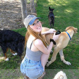 Dog Walker, Pet Sitter, Kennel in Toronto