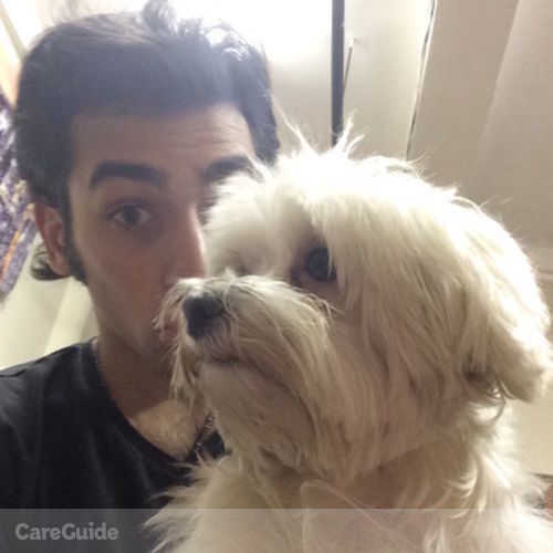 Pet Care Provider Paul Gabbianelli's Profile Picture