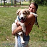 Dog Walker, Pet Sitter in Bellbrook