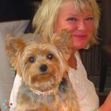 Dog Walker, Pet Sitter in Naples