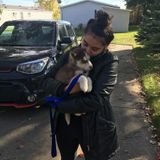 Hi, Im Maddy! Im looking for pet sitting and dog walking jobs!