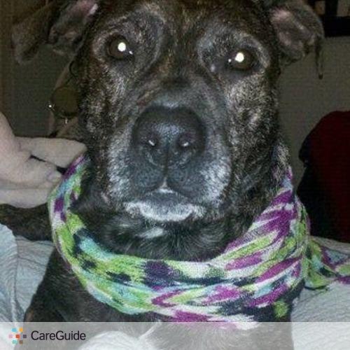 Pet Care Provider Paul Robinson's Profile Picture