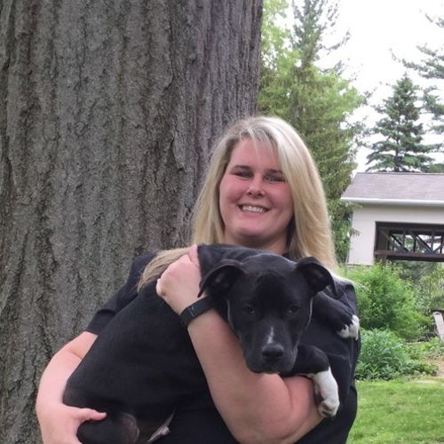 Pet Care Provider Sunny T's Profile Picture