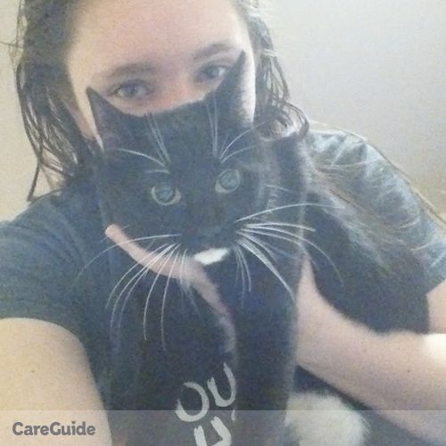 Pet Care Provider Matty Segrist's Profile Picture