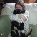 Dog Walker, Pet Sitter in Lansing