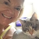 Experienced and Caring Ahwatukee Home/PET Sitter