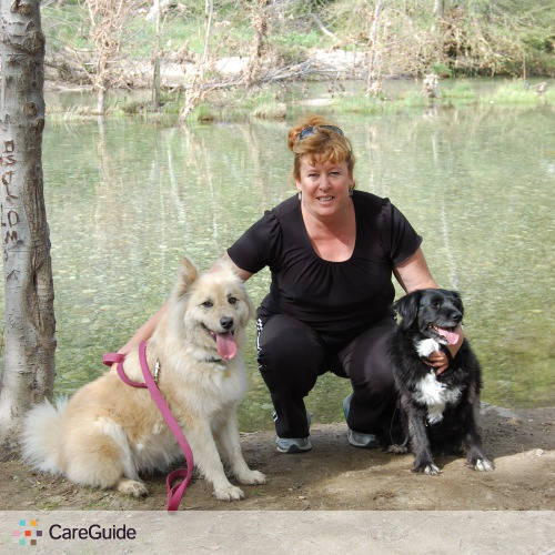 Pet Care Provider Julie Haas's Profile Picture