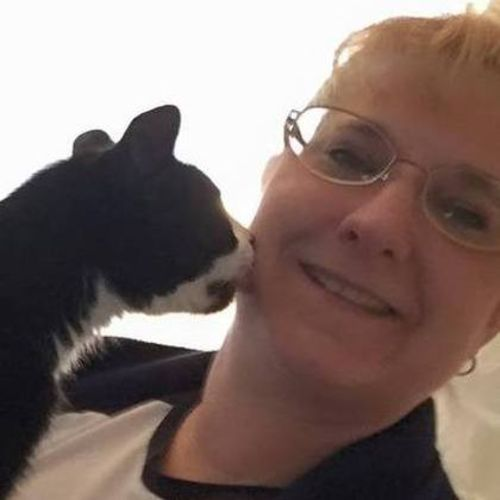 Pet Care Provider Tracy Stocker's Profile Picture
