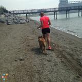 Dog Walker in Buffalo