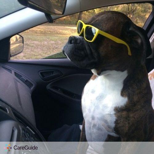 Pet Care Provider Ashley O's Profile Picture