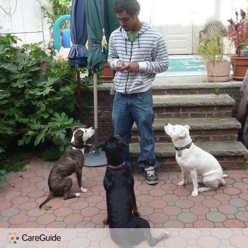 Pet Care Provider Alex Garcia's Profile Picture
