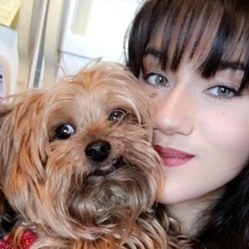 Pet Care Provider Alayna F's Profile Picture