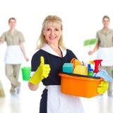 Seeking Kirkland Cleaner Opportunity