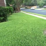 Speeds Lawn and landscape