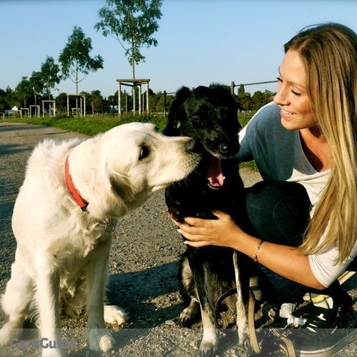 Pet Care Provider Viktoria P's Profile Picture
