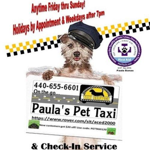 Pet Care Provider Paula B's Profile Picture
