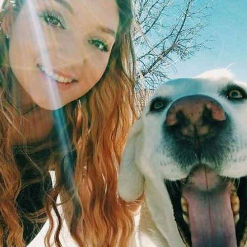 Pet Care Provider Vienna G's Profile Picture