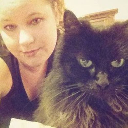 Pet Care Provider Brittany B's Profile Picture